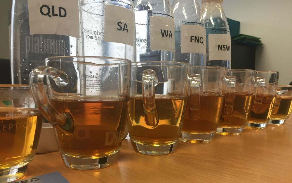 water-testing-dilmah