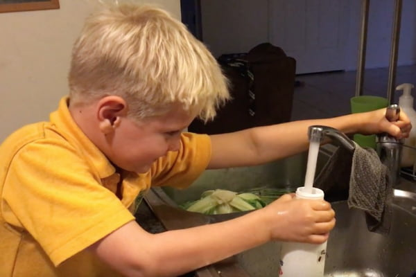 Inline water filter review and healthy recipes