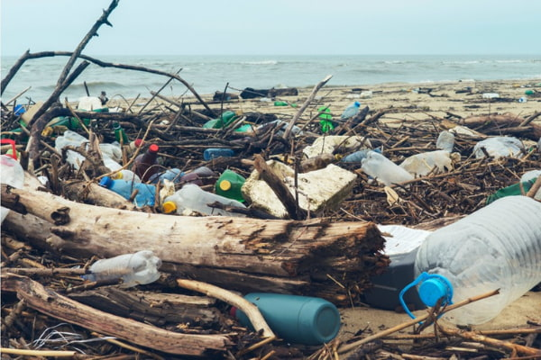The problem with single-use plastic water bottles
