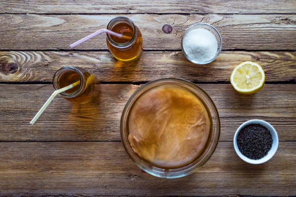 Kombucha by fermenting tea with symbiotic culture