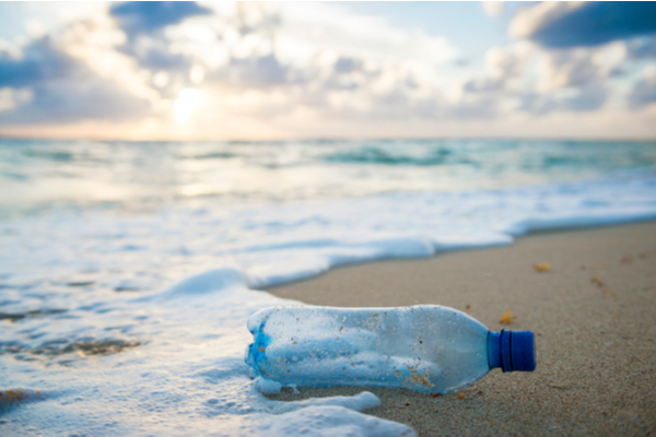 WFA - Used plastic water bottle washed up on the shore
